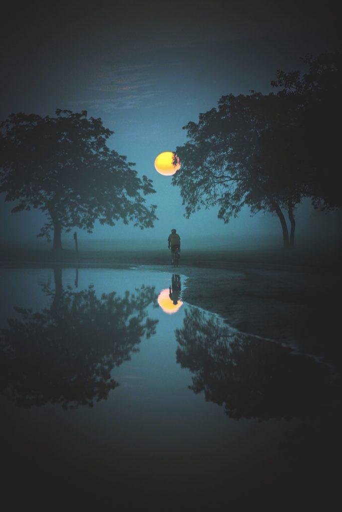 C4:美しい夜が知りたい